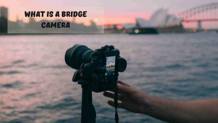 what is a bridge camera